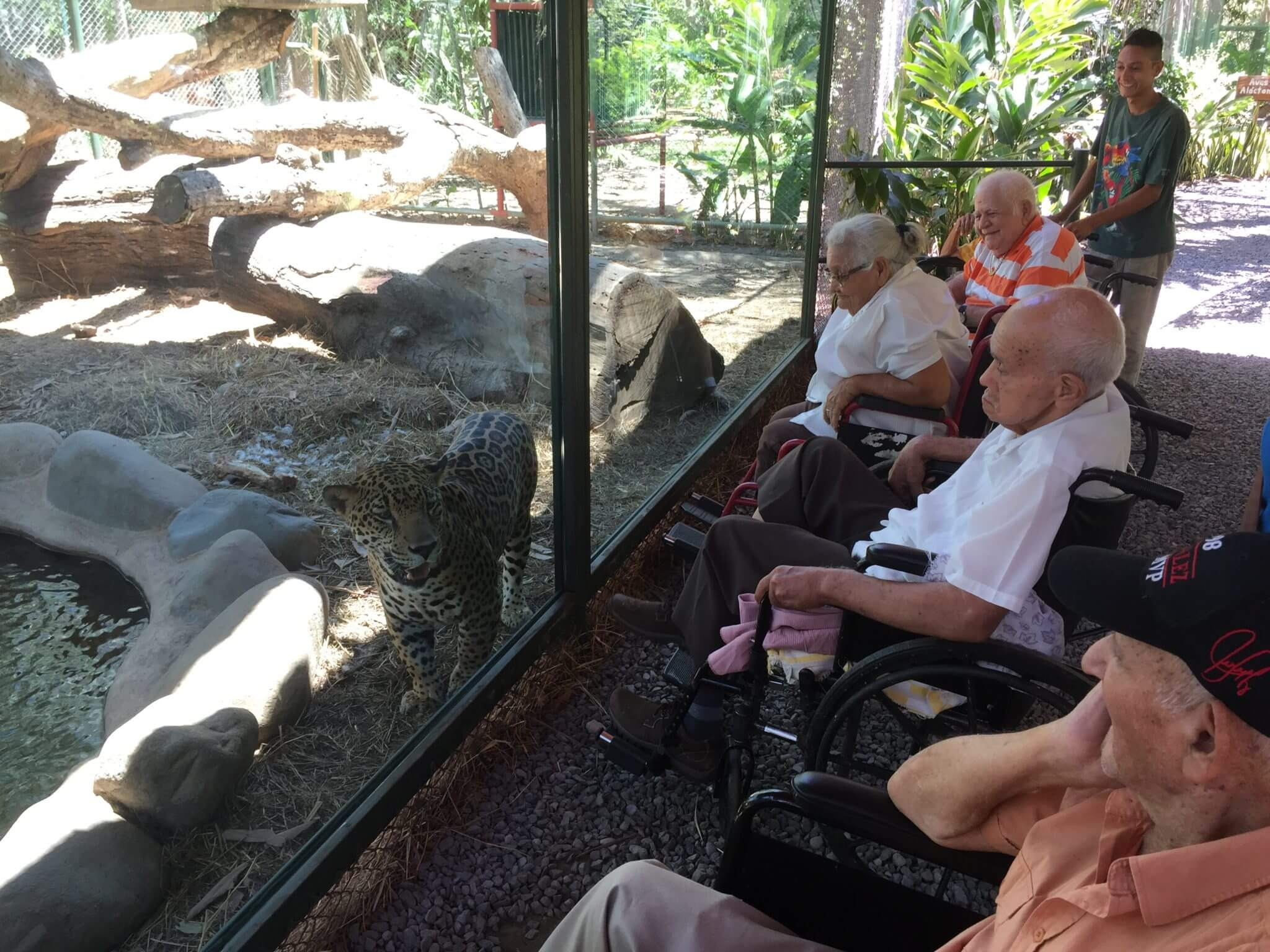 Senior Citizens visit NATUWA