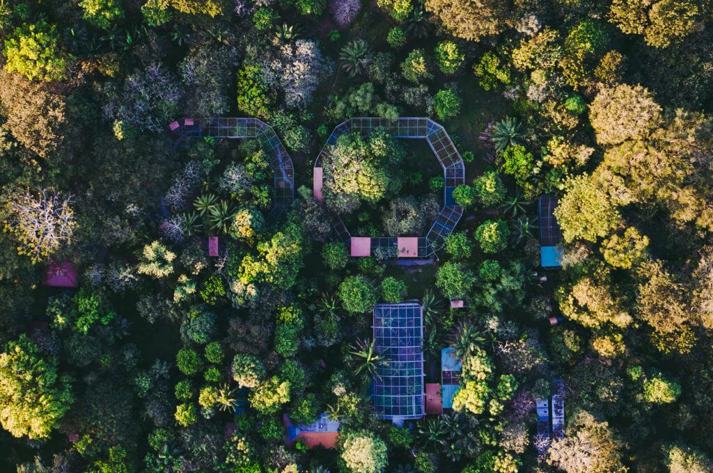 NATUWA Santuario de Animales Silvestres