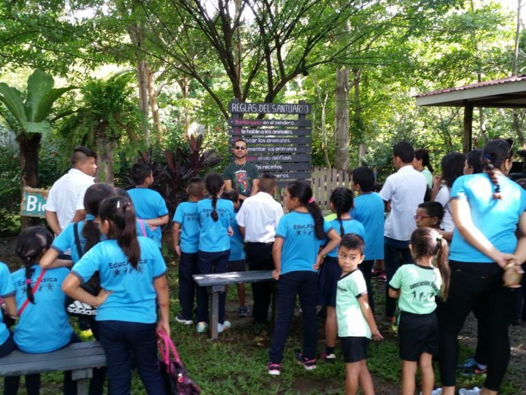 Read more about the article Celebration of World Environment Day