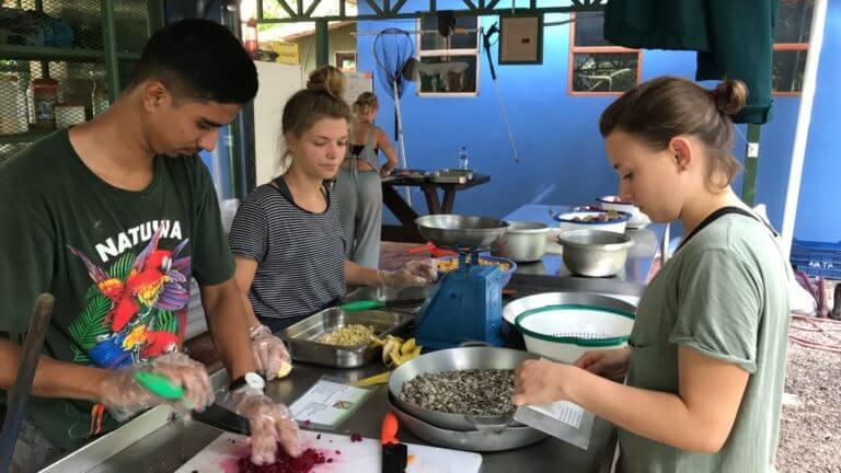 Wildlife Volunteer Opportunities in Costa Rica